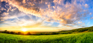 stock-photo-67071169-panorama-of-colourful-sunset-on-a-green-meadow